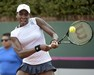 Fed_Cup_300_x_240